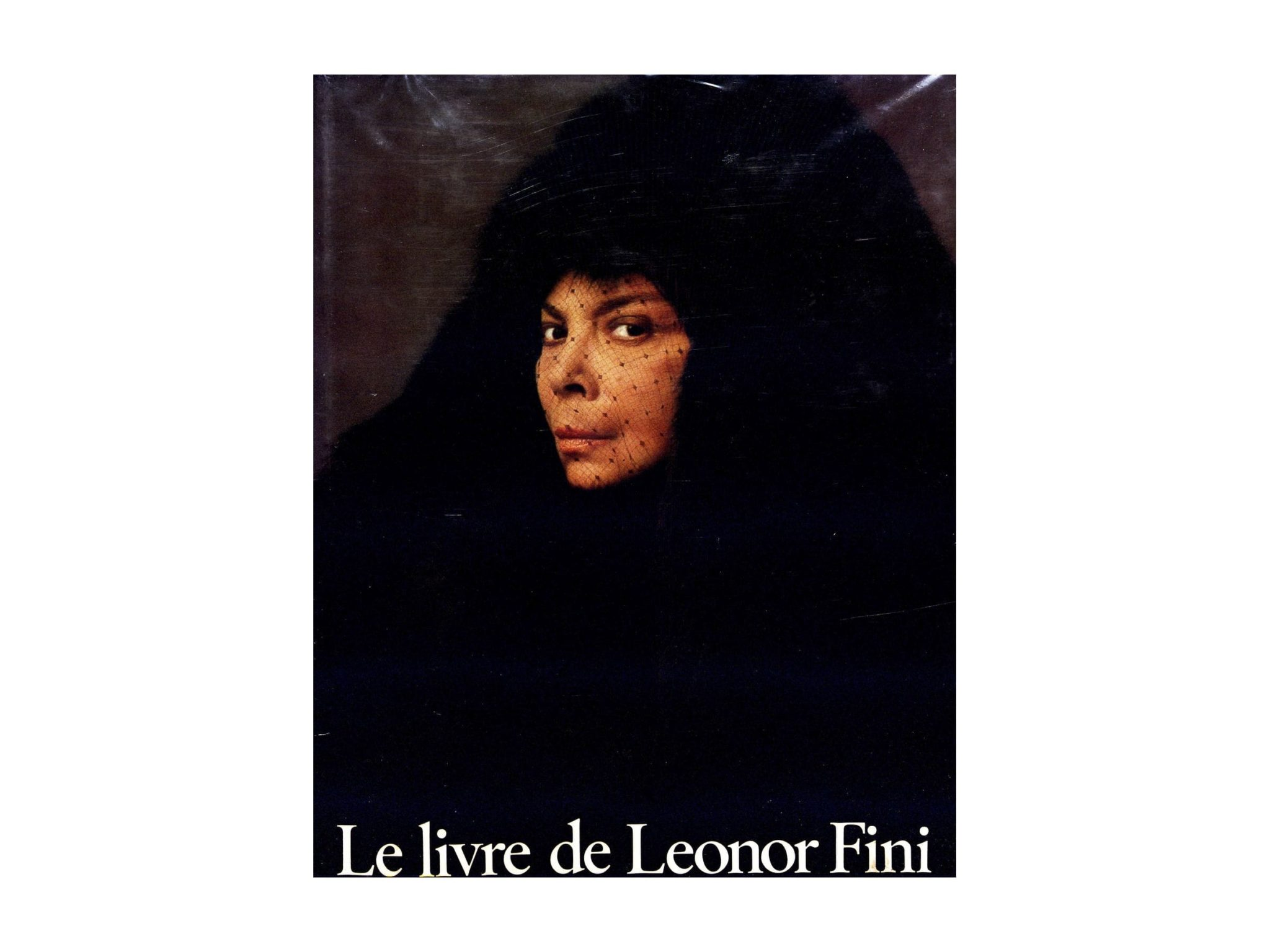 Carrousel-1-le-livre-de-leonor-fini-t